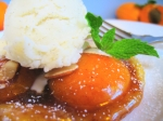 apricot-tarts-4b