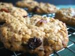 oatmeal-cookies-7b